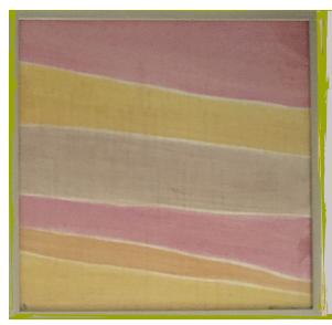 NaturalColors-Erde-Patricia-Ricci 50x50
