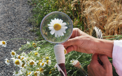 """10 wissenschaftliche Tipps für dein Experiment """"Leben"""""""