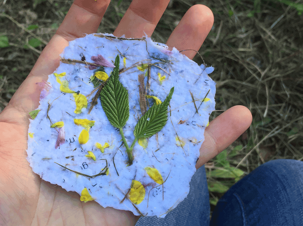 papier-Villa-Natura
