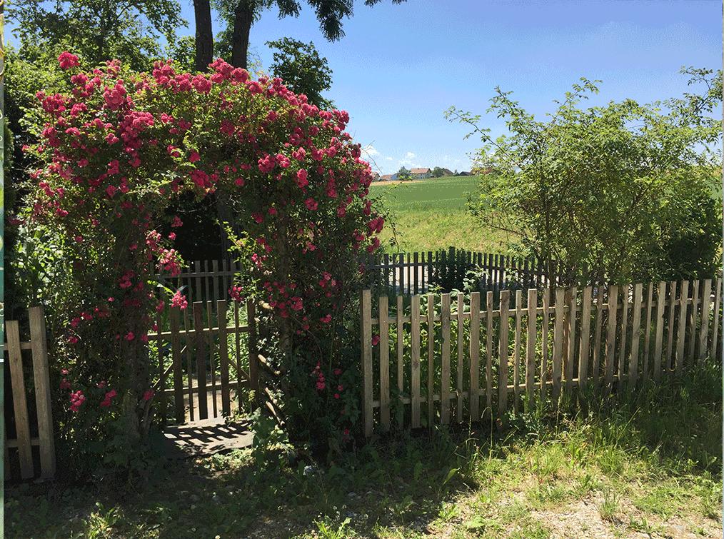 Villa-Natura-Garten