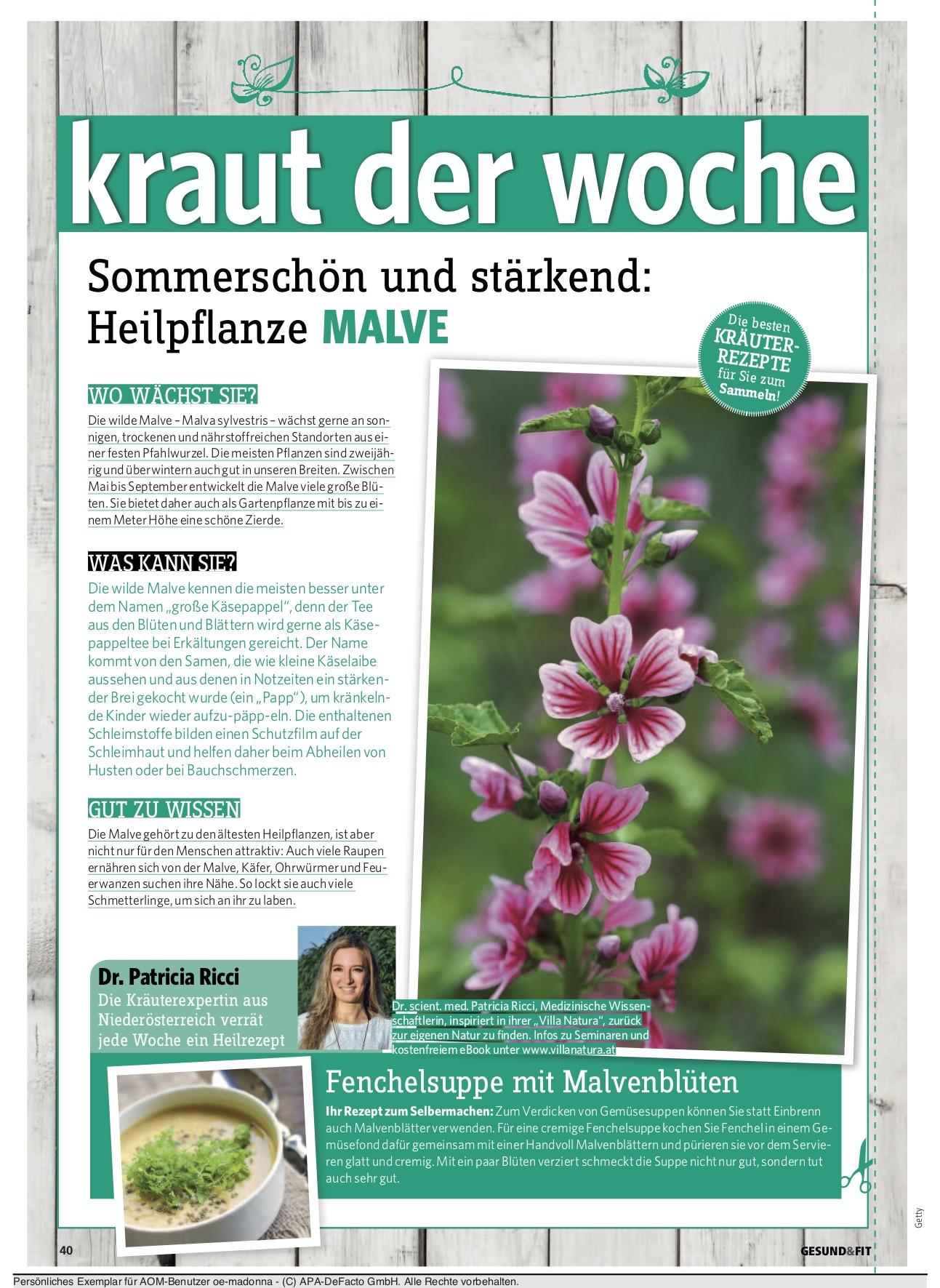 gesundfit_kolumne_17