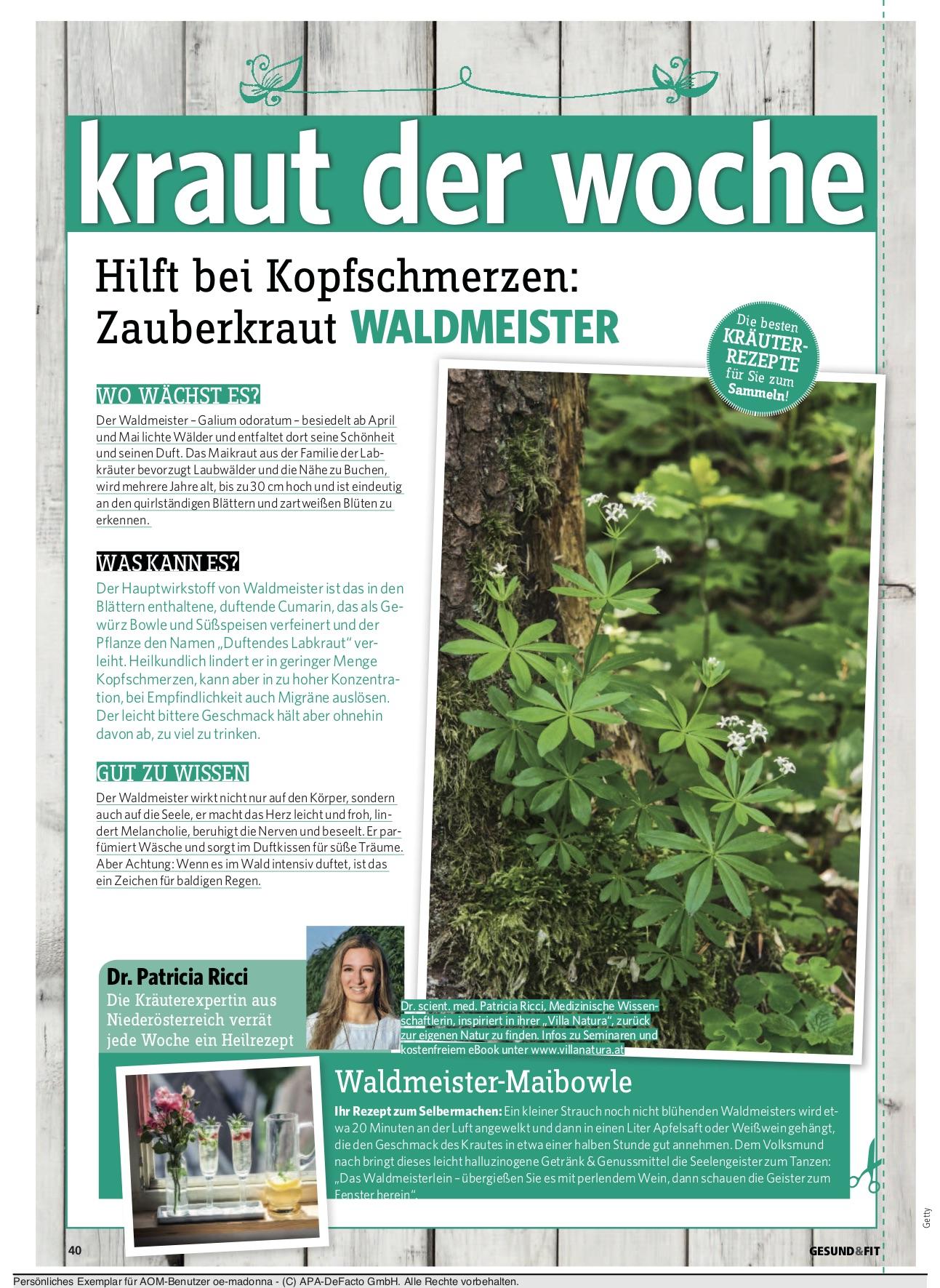 gesundfit_kolumne_4