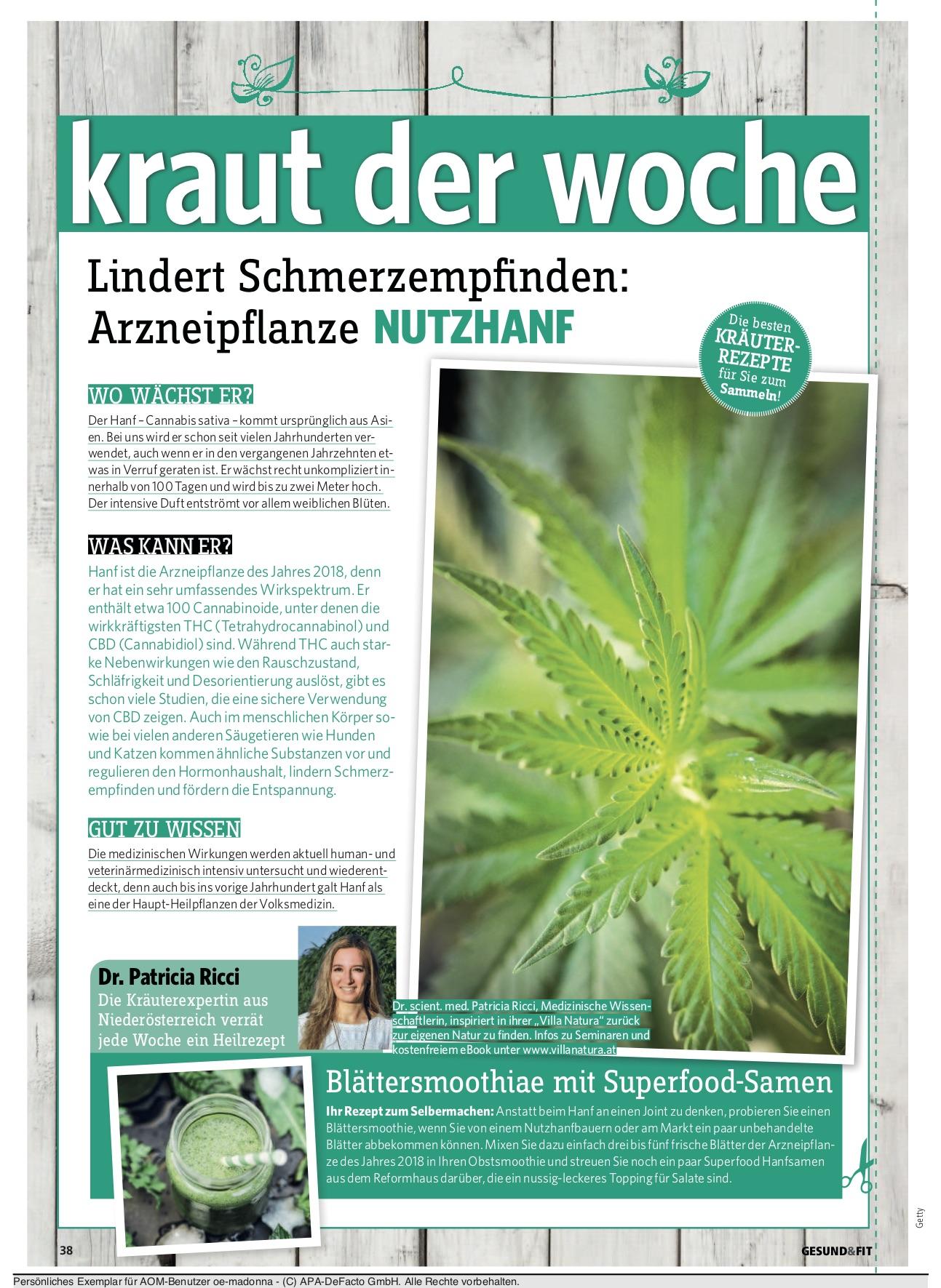 gesundfit_kolumne_5
