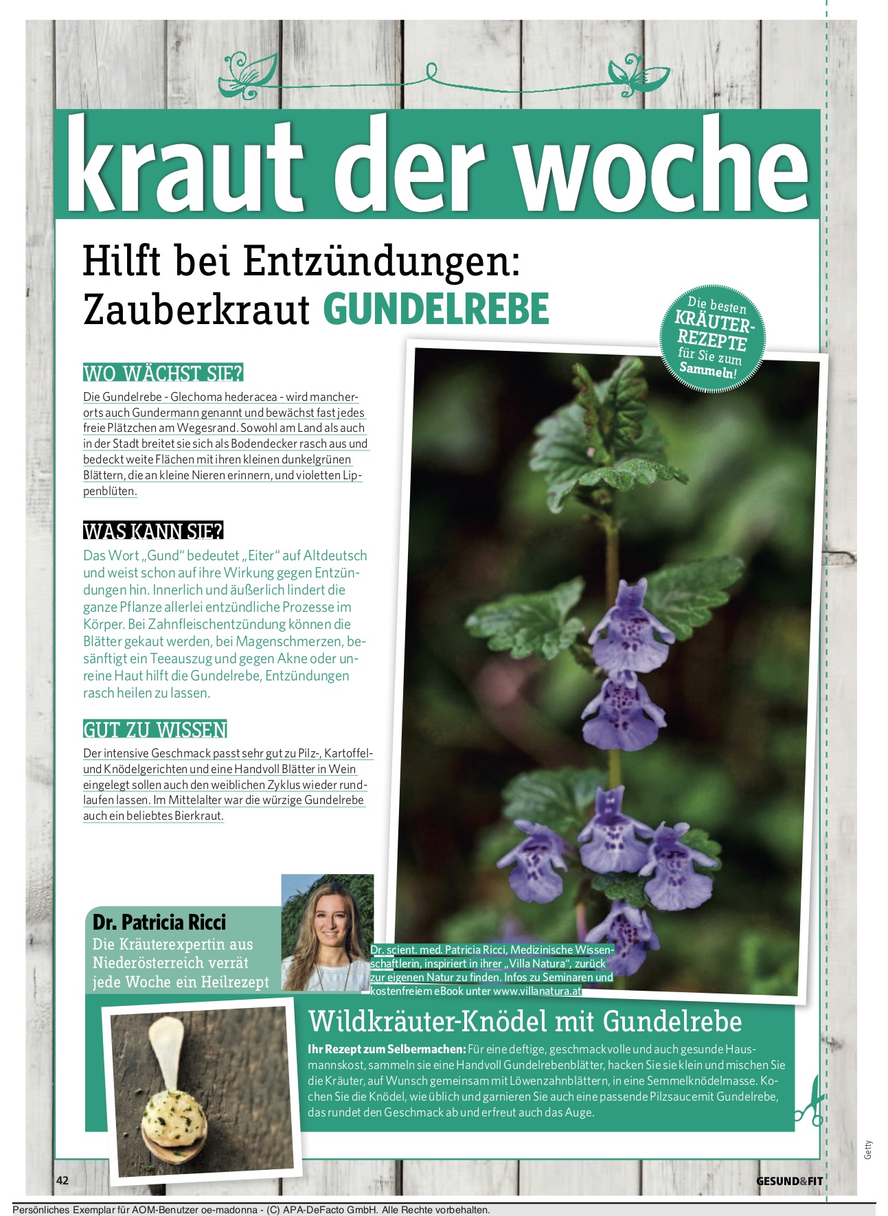 gesundfit_kolumne_6